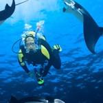 man scuba diving under water