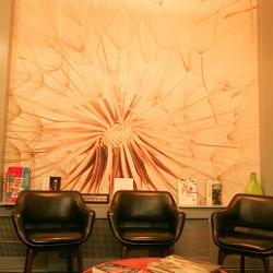 Hearing Centre Hobart Waiting Room